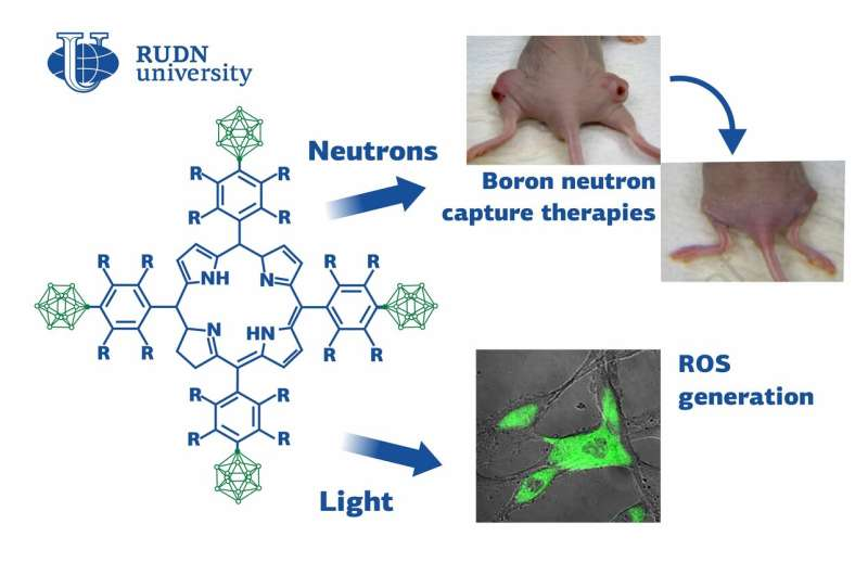 Scientists Developed New Compounds for Photodynamic Antitumor Therapy
