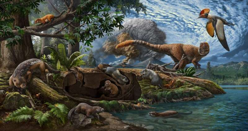 Scientists discover two new species of ancient, burrowing mammal ancestors