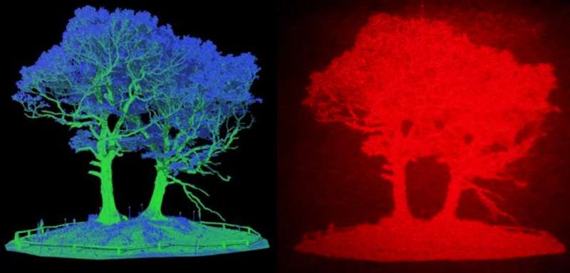 3D holographic head-up display could improve road safety