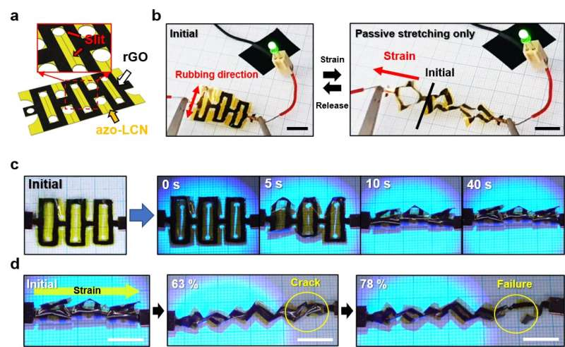 3D shape reconfiguration of stretchable electronics