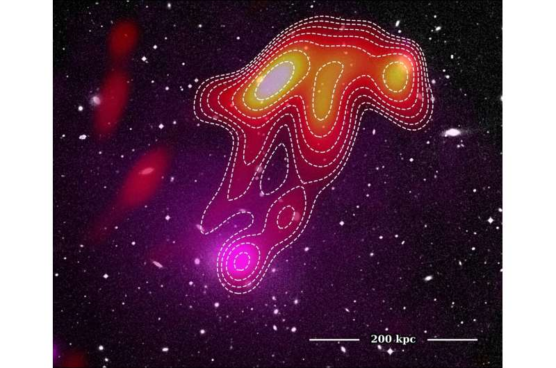 """Astronomers spot a """"space jellyfish"""" in Abell 2877  - 4 astronomerss - Astronomers spot a 'space jellyfish' in Abell 2877"""