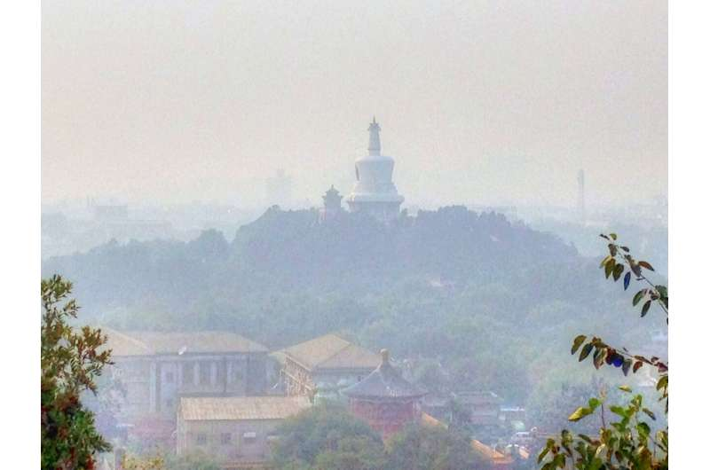 COVID-19 lockdowns linked to pollution spikes in some cities