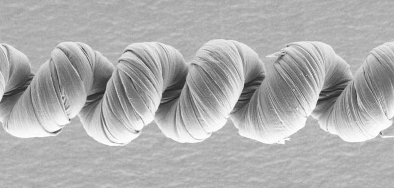 Researchers create powerful unipolar carbon nanotube muscles