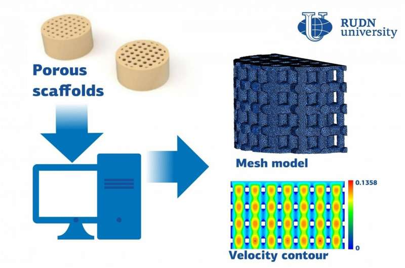 RUDN University professor suggested how to calculate the implant materials permeability