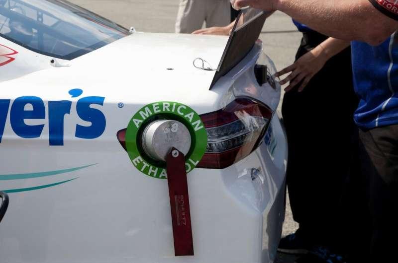 Los científicos desarrollan un método más económico que podría ayudar a crear combustibles a partir de plantas