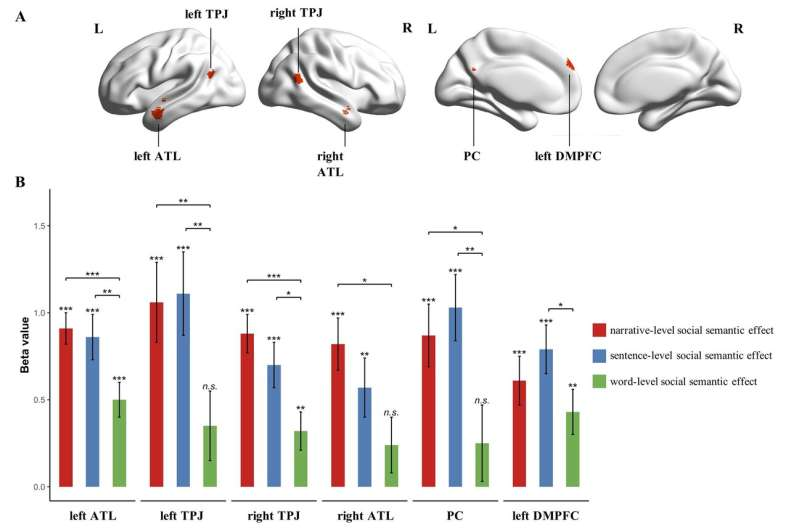 Study identifies brain areas that support social semantic accumulation
