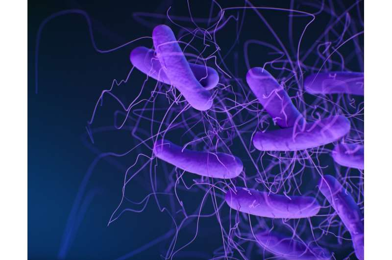Study reveals new details about how bacterial toxins cause life-threatening colitis