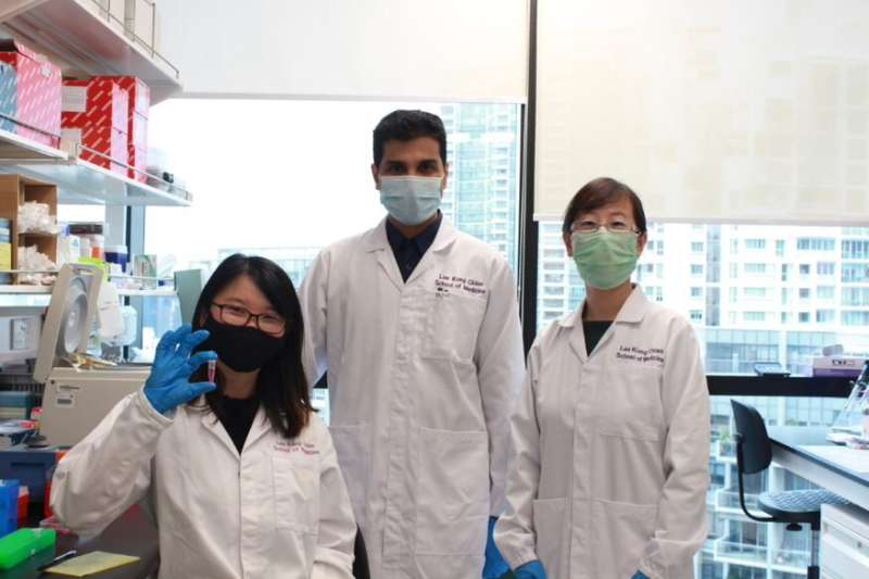 Researchers develop oral insulin nanoparticles that could be an alternative to jabs