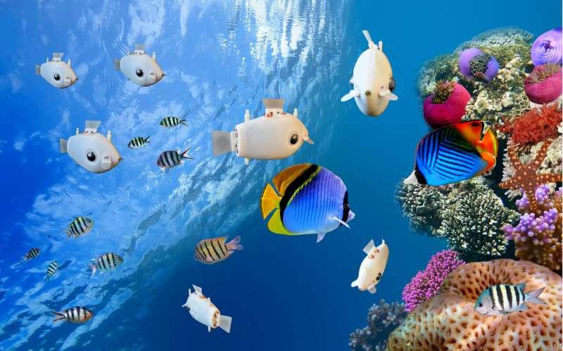 Kawanan robot berenang seperti sekumpulan ikan