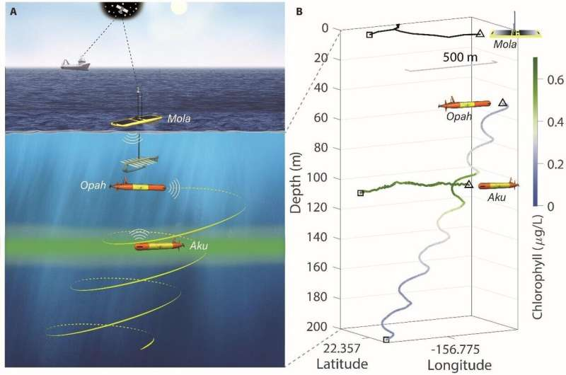Taking the lab into the ocean: A fleet of robots tracks and monitors microbial communities