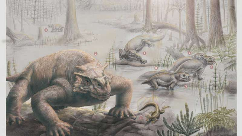 New study investigates how life on land recovered after 'The Great Dying'
