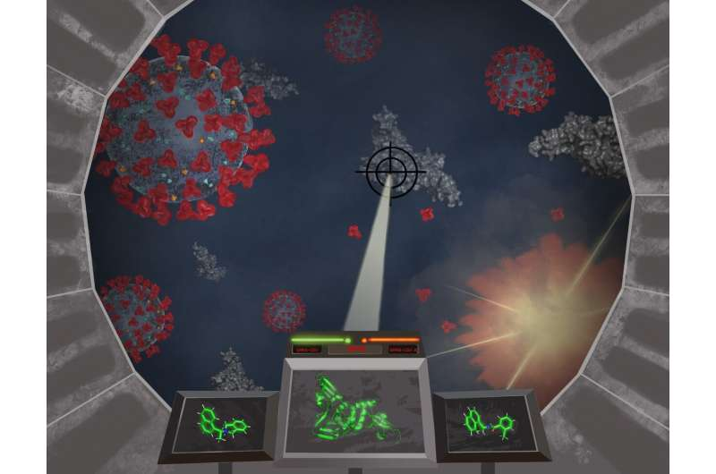Researchers find inhibitors effective against a coronavirus enzyme