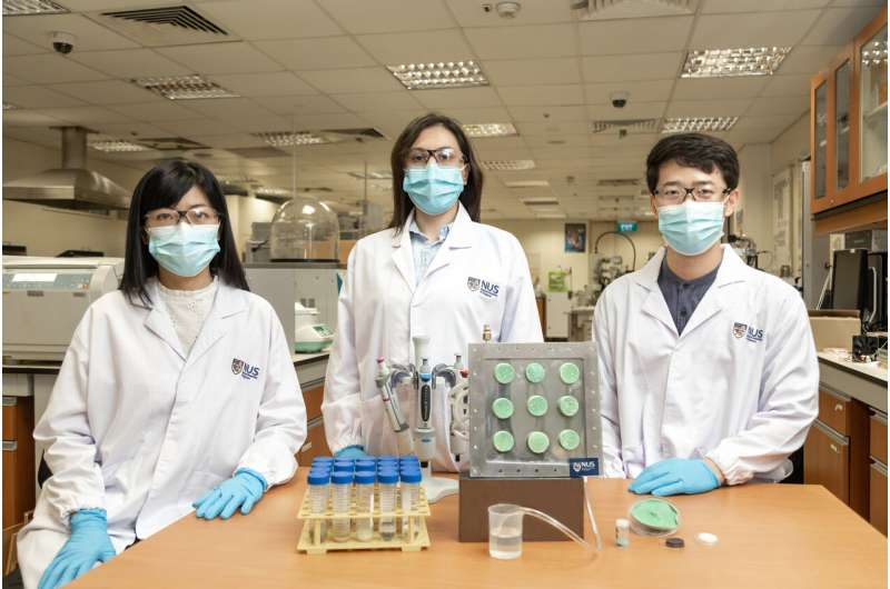 Engineers create 'smart' aerogel that turns air into drinking water