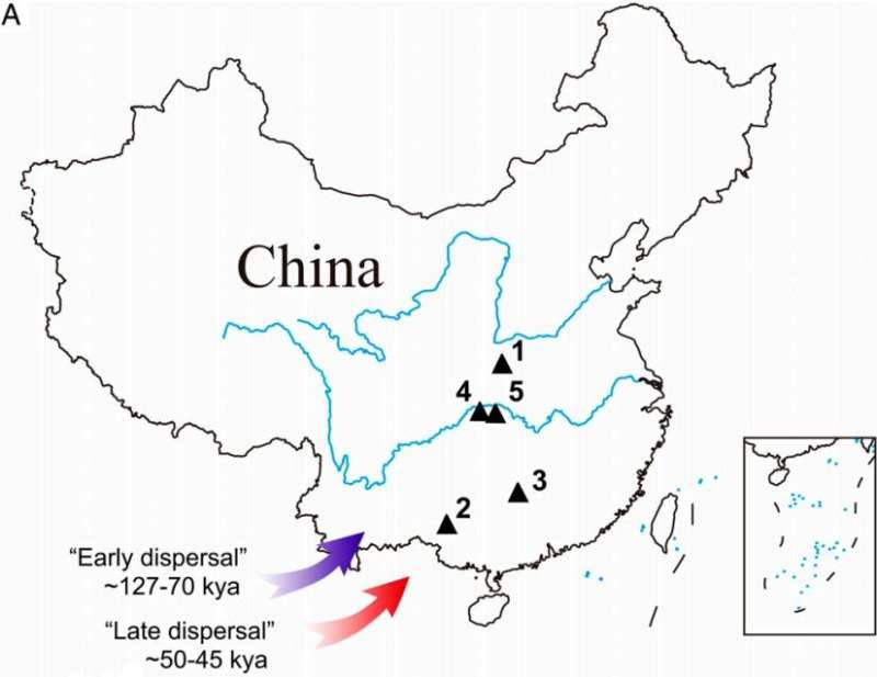 Retesting of ancient teeth found in China shows they are 16,000 years old—not 120,000