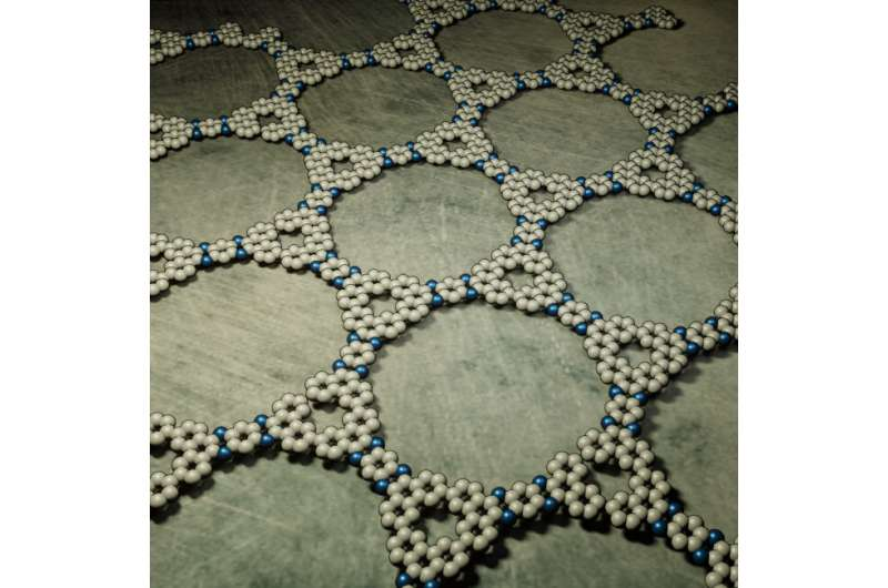 Kagome graphene promises exciting properties