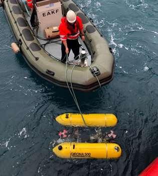 Underwater robots are key to understanding and protecting deep-water species