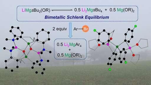 Lithium-magnesium alkyl-alkoxy intermediates in Br-Mg exchange