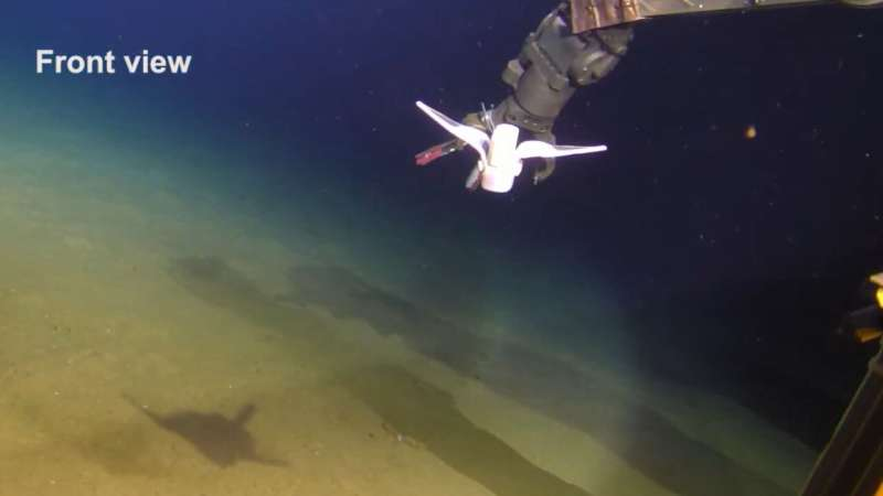 Soft robot swims in the Mariana Trench