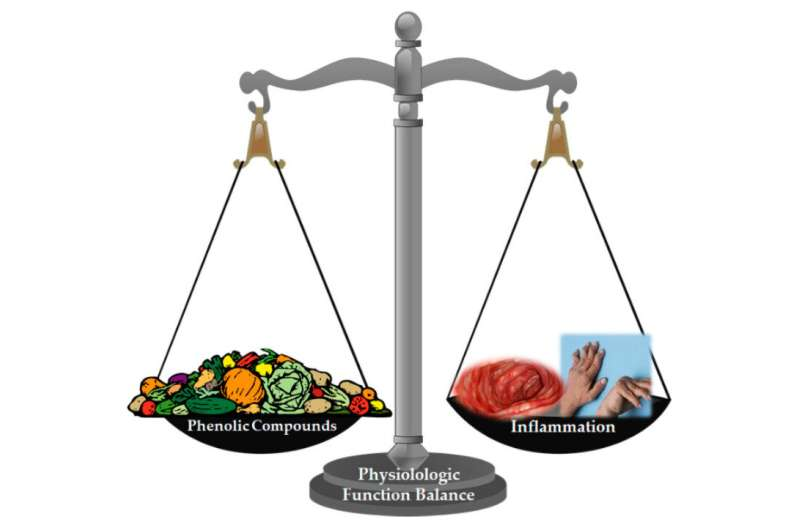 Dietary phenolic compounds have an impact on noncommunicable diseases
