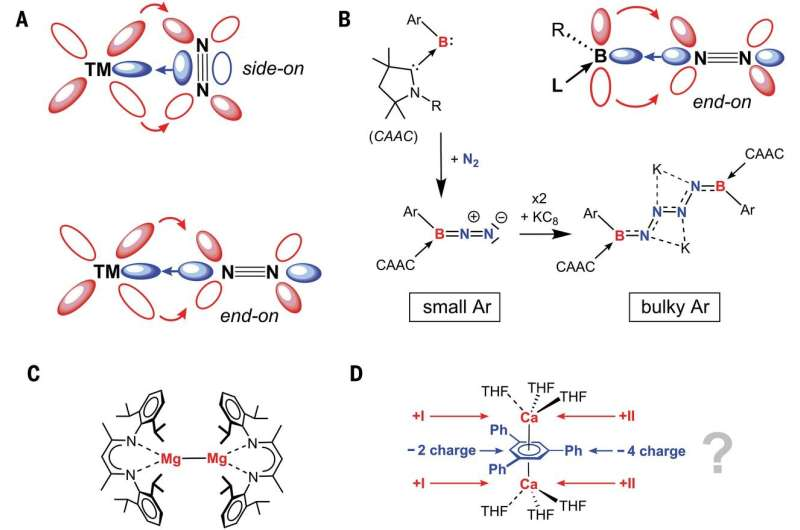 Researchers find surprising transition-metal-type bonds while building new calcium(I) complexes