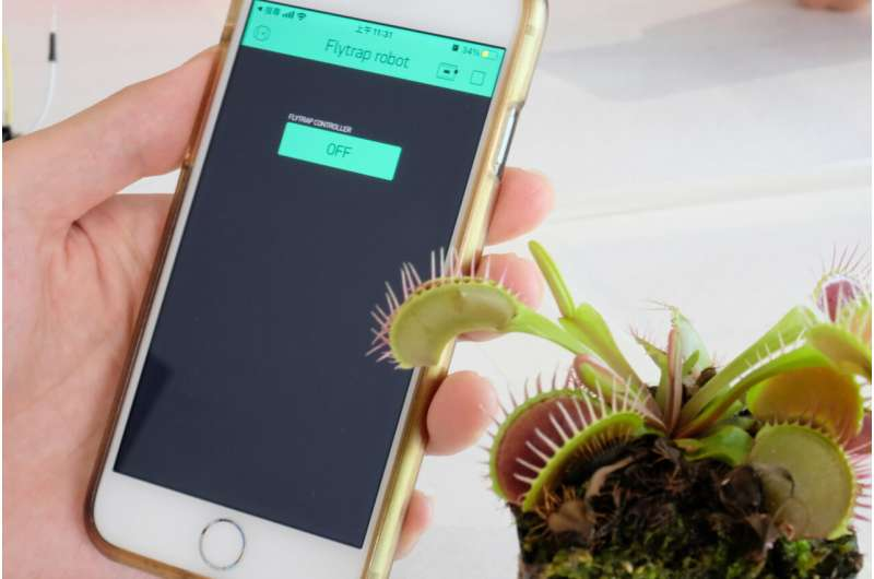 Scientists develop device to communicate with plants using electrical signals