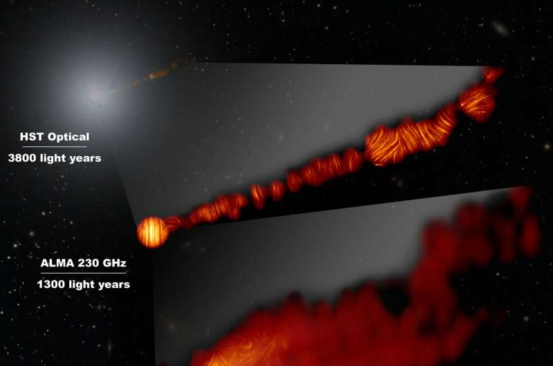 magnetic fields at the edge of M87's black hole