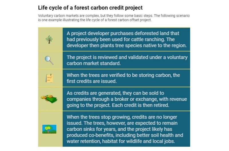 Why companies' 'net-zero' emissions pledges should trigger a healthy dose of skepticism