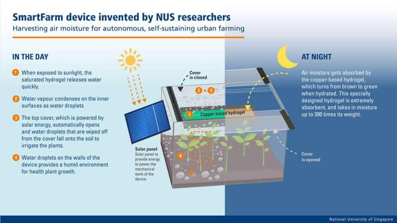 NUS researchers create SmartFarm device to harvest air moisture for autonomous, self-sustaining urban farming