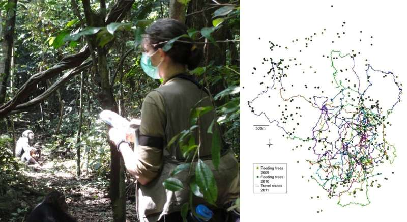 Travel reveals the mind: Exploring the minds of our primate cousins in the wild, using under-exploited observations of their tra