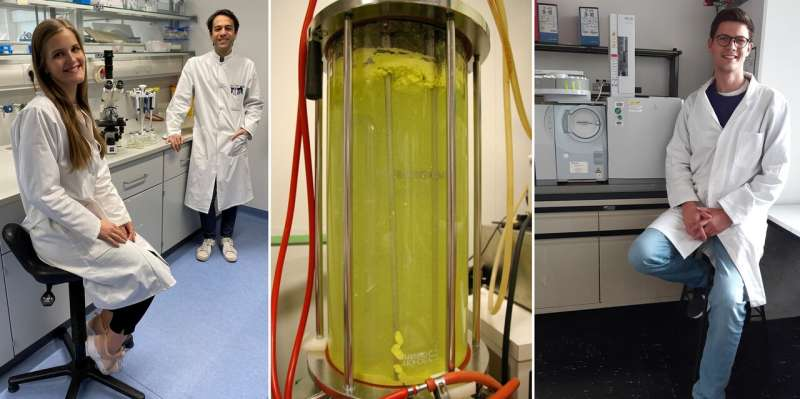 Scientists provide new insights into the citric acid cycle