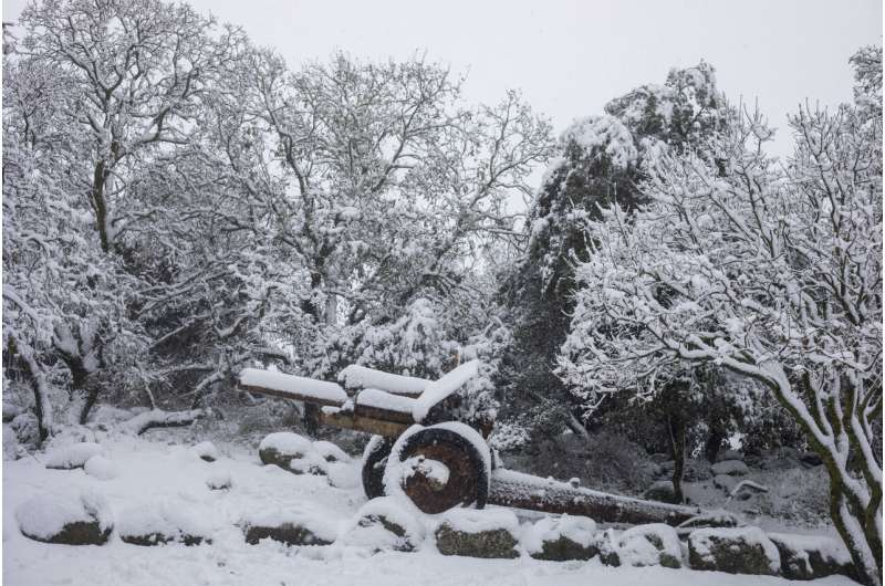 Heavy snowfall, gales as winter storm hits Middle East