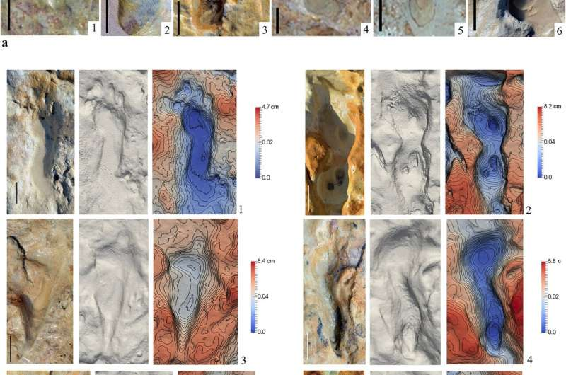 87 Neanderthal footprints found on an ancient shoreline on the Iberian Peninsula