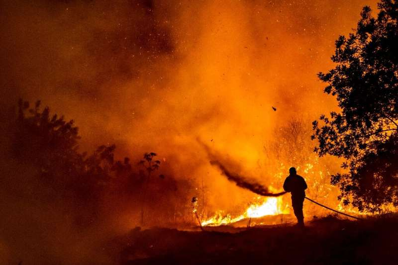 A firefighter battles the flame in a forest on the slopes of the Throodos mountain chain, as a giant fire rages on the Mediterra
