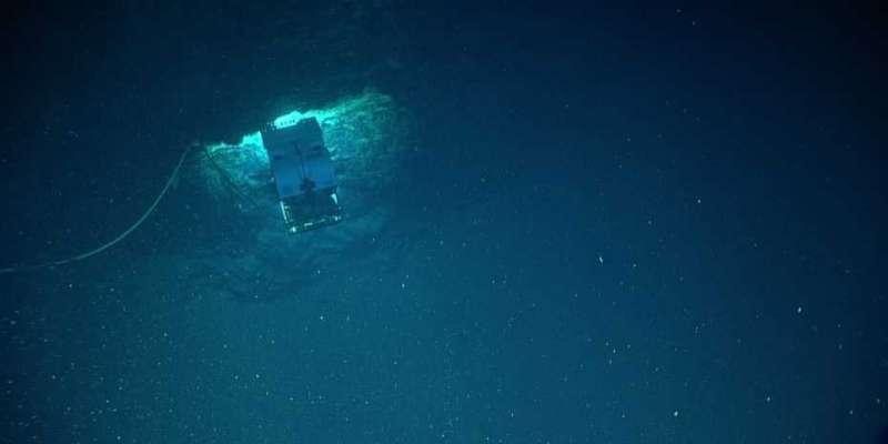 Uno sguardo alla pompa di carbonio biologica dell'oceano