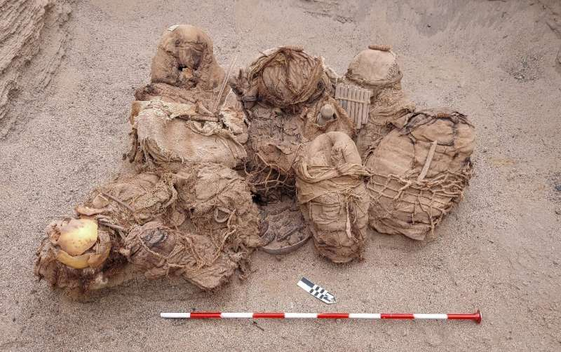 A handout picture released by Peruvian gas company Calidda, shows objects, food,  artifacts and ancient funeral bundles containi