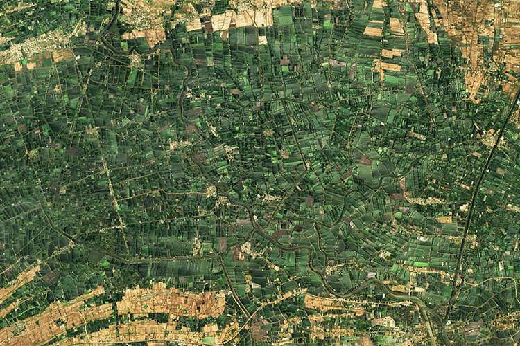 A machine learning breakthrough: using satellite images to improve human lives