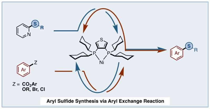 A mutual exchange: Synthesizing aryl sulfides from non-smelling, non-toxic compounds