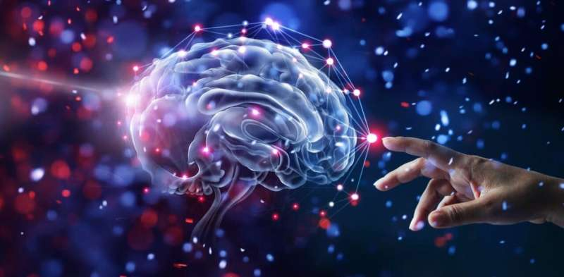 A new understanding of how the human brain controls the hands