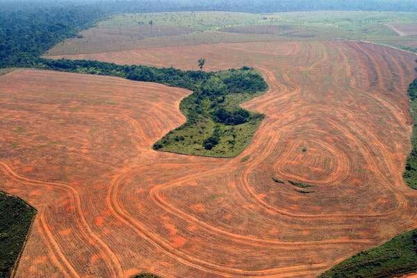 A push to make 'ecocide' a global crime
