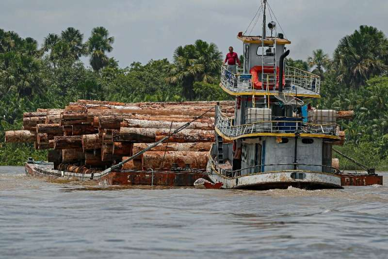 A riverboat in the Brazilian Amazon transports logs on September 18, 2020