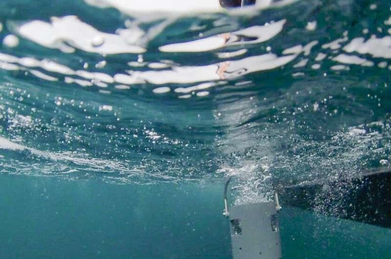 Un chien renifleur de microplancton robotique