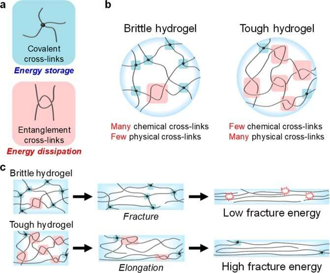 A universal method to easily design tough and stretchable hydrogels