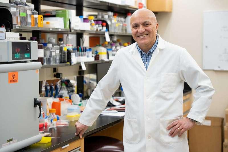 Aging impairs anti-tumor T-cell response via mitochondria dysfunction