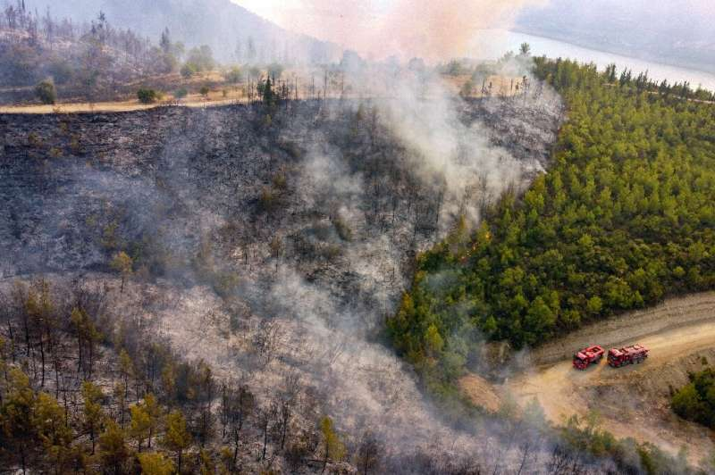 Agriculture and Forestry Minister Bekir Pakdemirli said 111 forest fires were under control, while five blazes continued in the