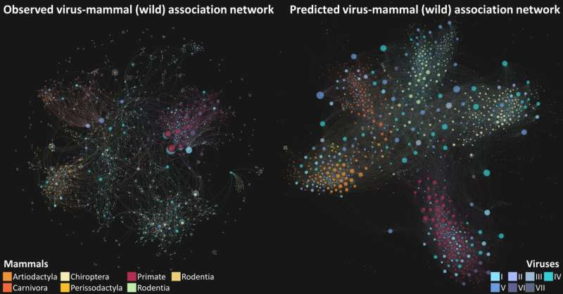 AI used to predict unknown links between viruses and mammals