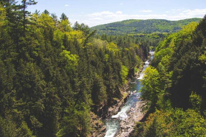 Algorithm helps probe connections between stream chemistry and environment