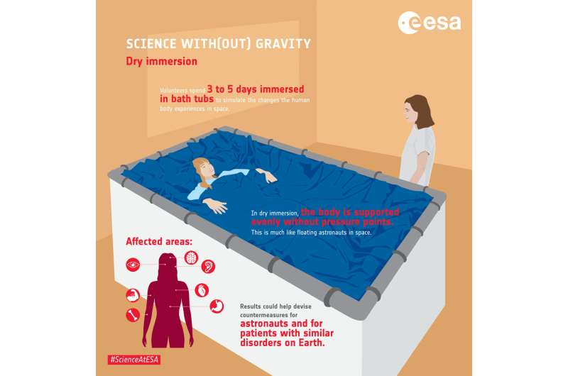 All-female crew in water-tank spaceflight study