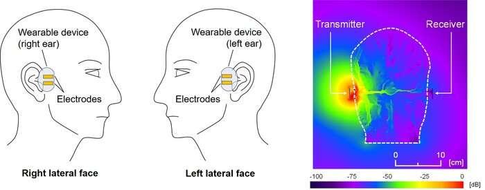Tout dans votre tête: explorer les communications entre le corps humain avec des aides auditives binaurales