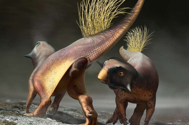 All-purpose dinosaur opening reconstructed for first time