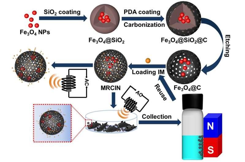 Alternating magnetic field-responsive nano-platform developed for controlled pesticide release